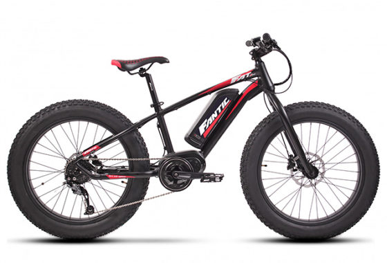 Fat 24 junior ebike rental